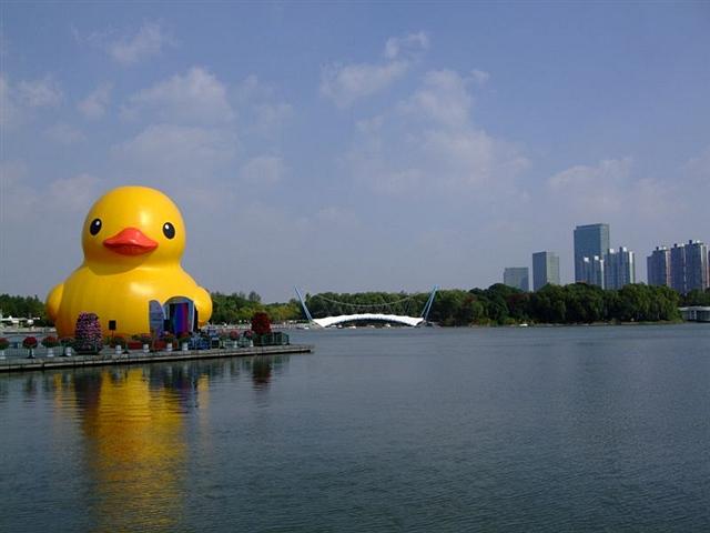 2014.10.世纪公园.大黄鸭(照片)
